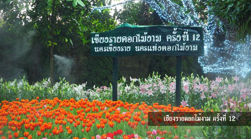 เชียงรายดอกไม้งาม 2558