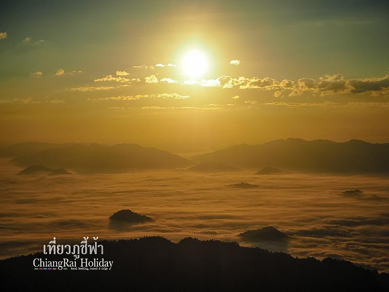 เที่ยวภูชี้ฟ้า เชียงราย